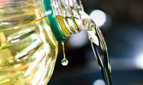 Hábito Legal realizará nova coleta de óleo de cozinha usado